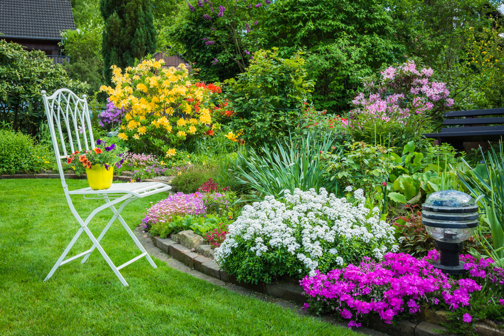 Floral Lane How To Start Your Home Garden Oneroze